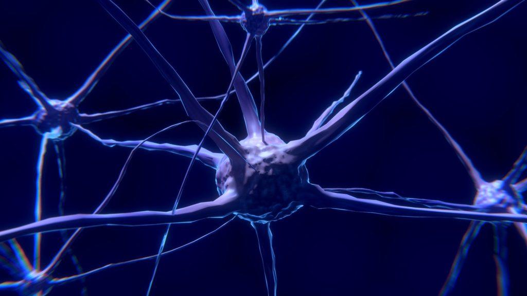Biz göremesek de nöronlar, zaman algımız üzerinde çok büyük etkiye sahiptir.